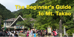 The Beginner's Guide to Mt. Takao